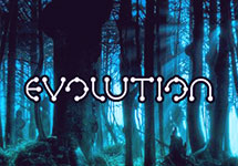 Evolution — casino-avtomaty.com