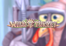 Wild Turkey — casino-avtomaty.com