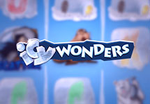 Icy Wonders — casino-avtomaty.com